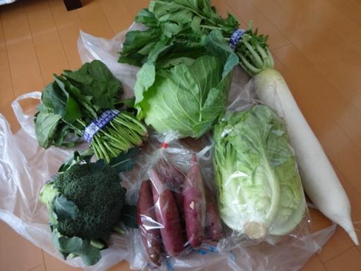 2018年JA横浜・和泉支店農業まつり_野菜