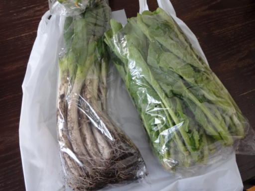 泉区役所の野菜201901