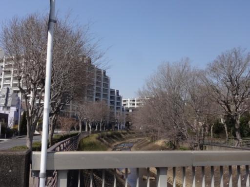 桜川公園近く
