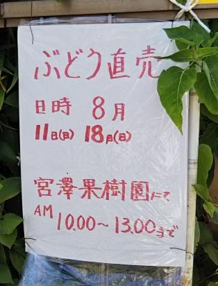 宮澤果樹園お知らせ