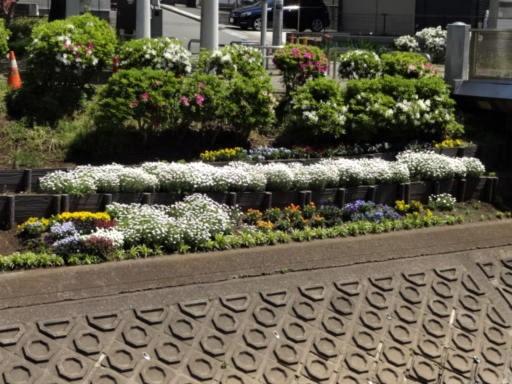 地蔵原花壇